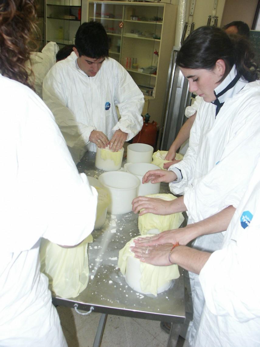 Elaboración de queso 7