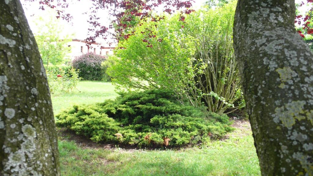 Jardín 13