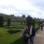 Jardín Castillo 6