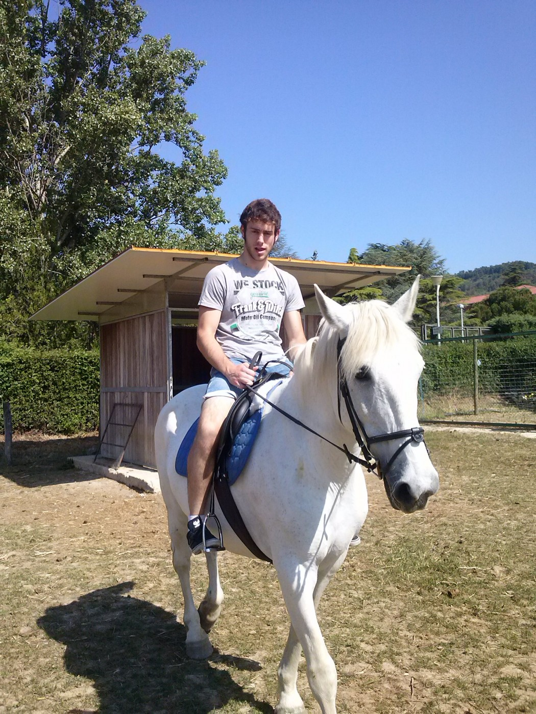 Mikel con yegua