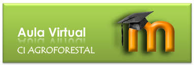 aula virtual ci agroforestal 3