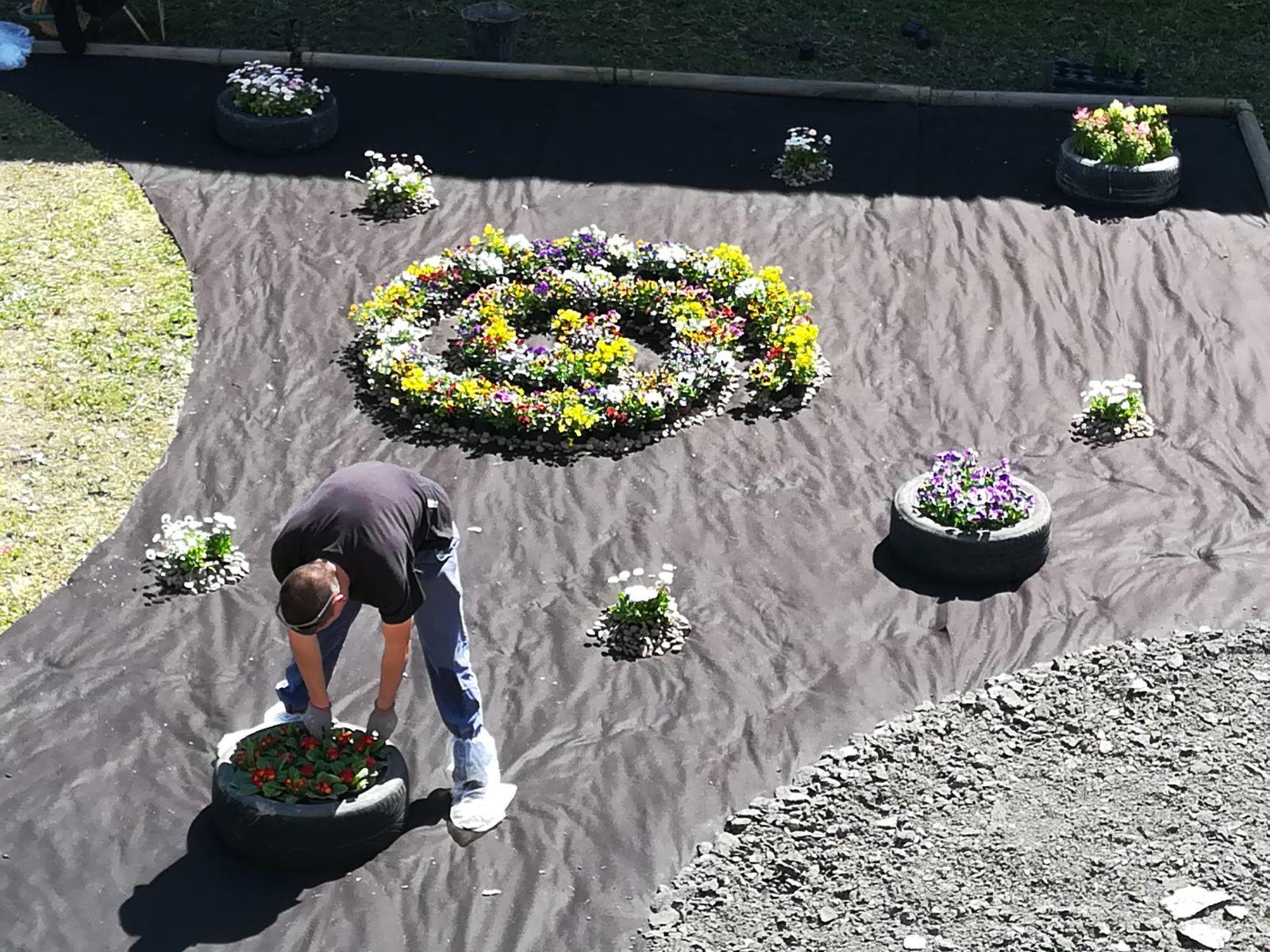 Jardineria efimera