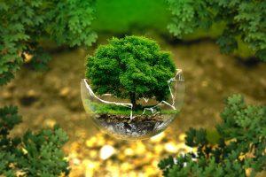 Educacion y control ambiental